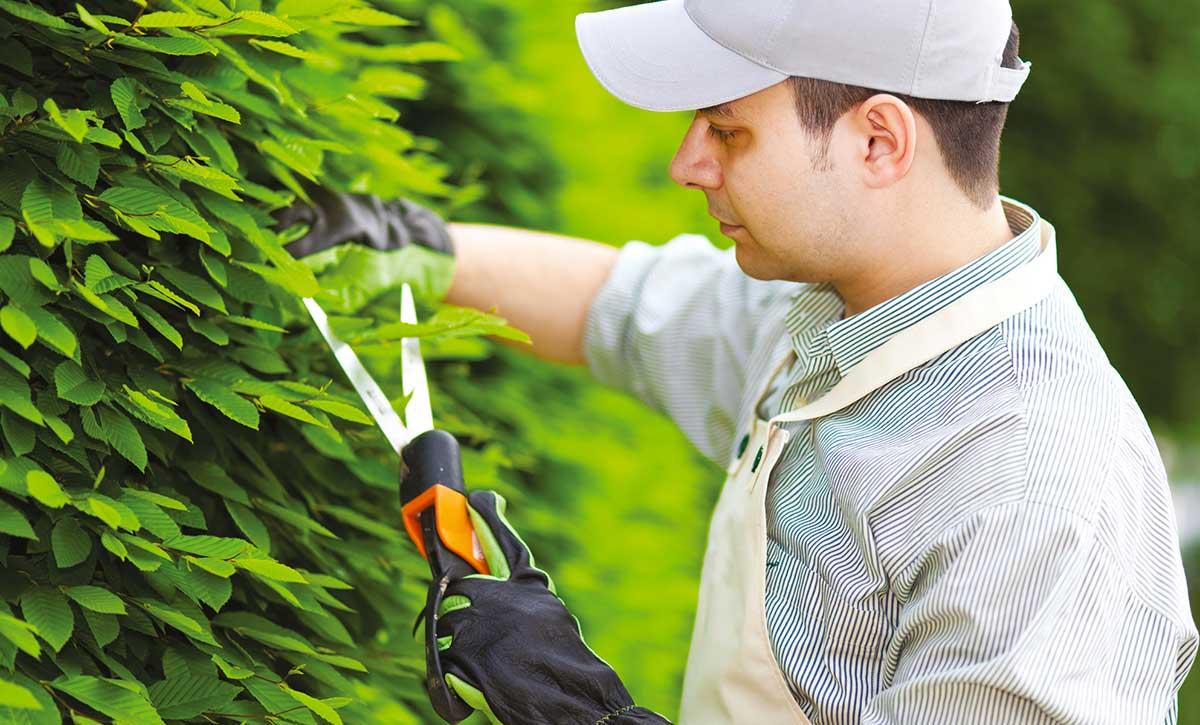 Mettre en œuvre l'accompagnement et le suivi des demandeurs d'emploi