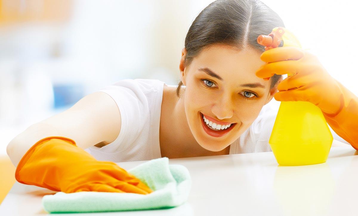 Défi Services, c'est des professionnels des services à domicile (travaux ménagers, espaces verts, entretiens, rénovation, manutention, garde d'enfants...)